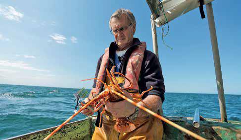 Pêcheurs et scientifiques sur un même bateau